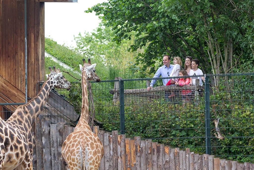 Giraffenhaus 1
