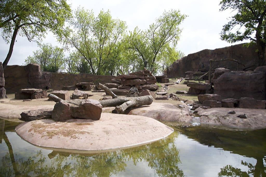 Pavianlage Magdeburger Zoo