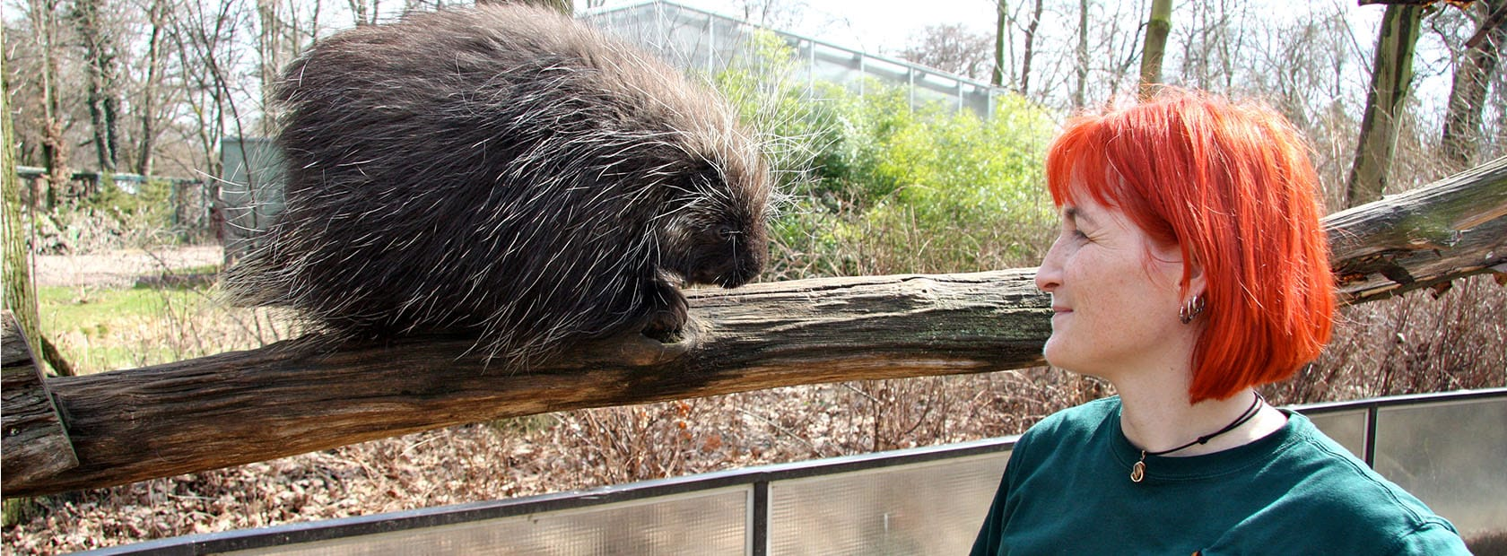 Arbeiten im Zoo