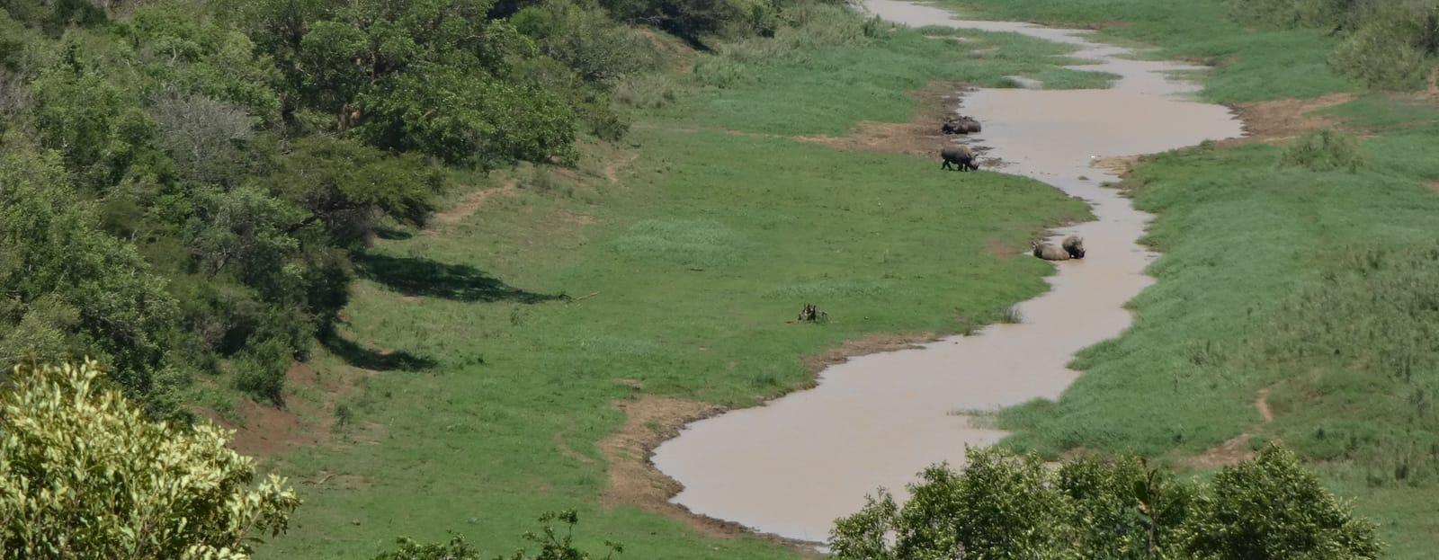 Artenschutz in Südafrika