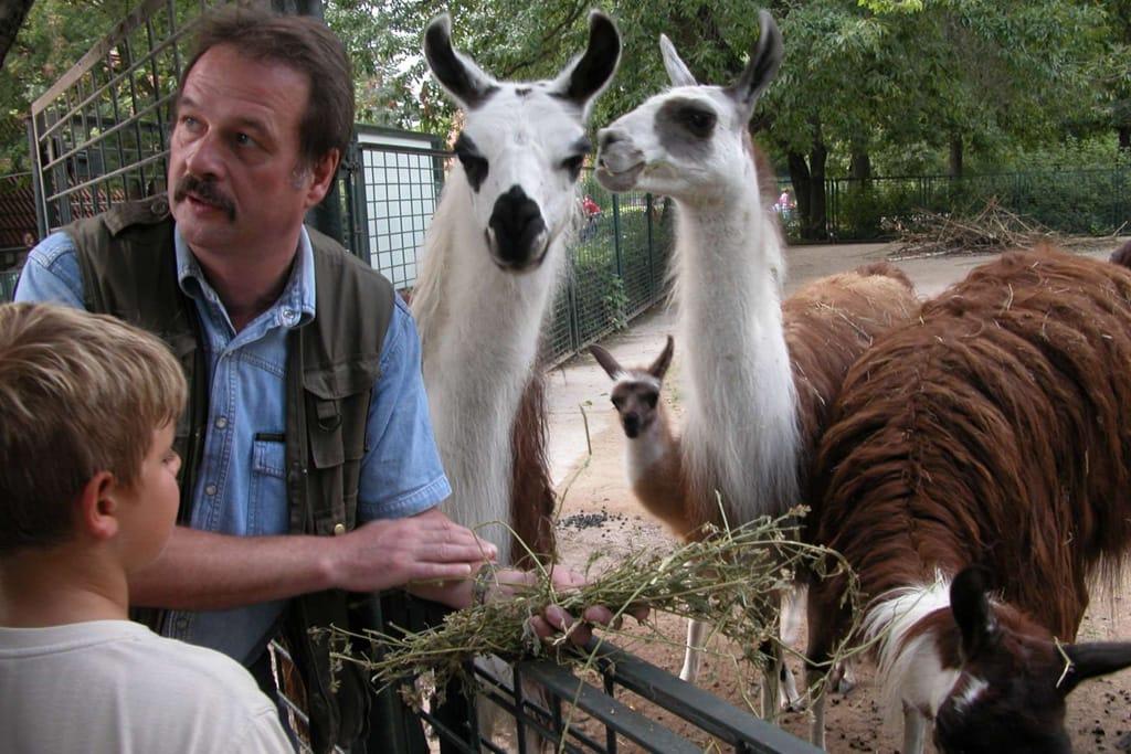 Besuch beim Lama
