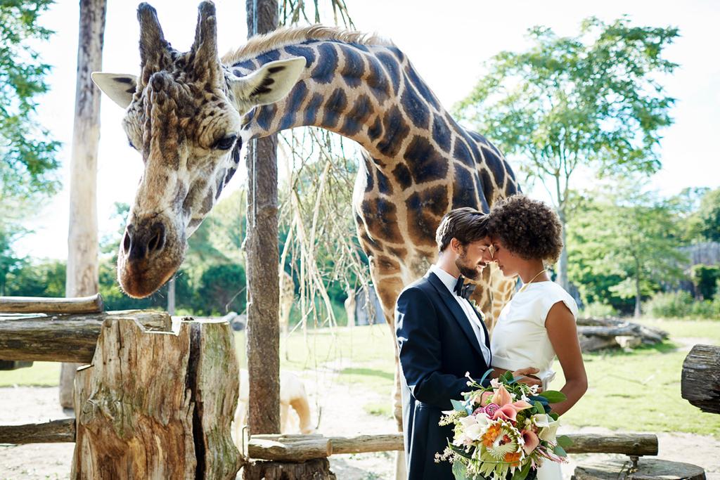 Hochzeit im Zoo / Marché Mövenpick Deutschland GmbH
