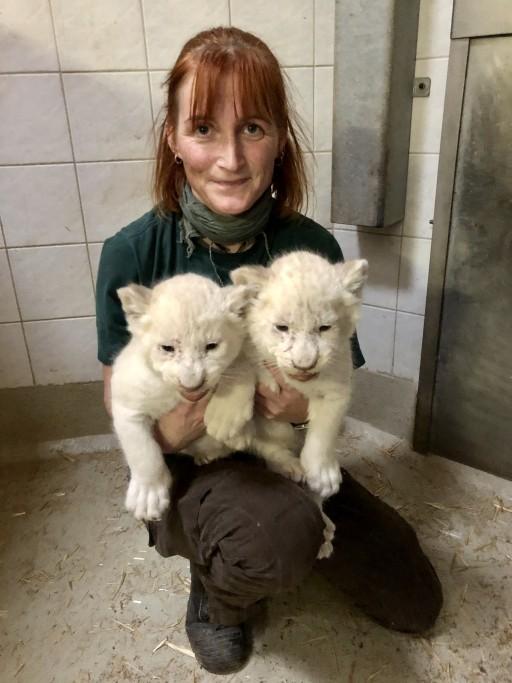 Tierpflegerin Annett Schwabe bringt die beiden Katzen zum Wiegen