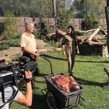 """MDR """"Vor Ort"""" am 10.10.2020 um 16:00 Uhr mit Zoo-Jubiläumsfilm"""