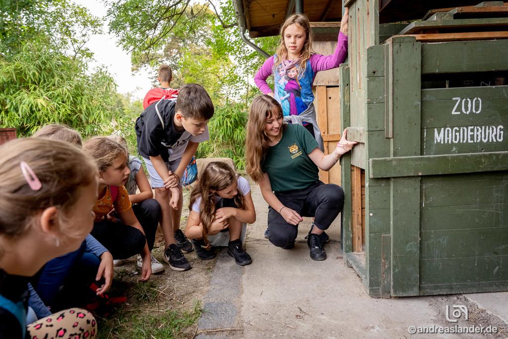 Zoo Guide erklärt den Transport von Tieren / Andreas Lander